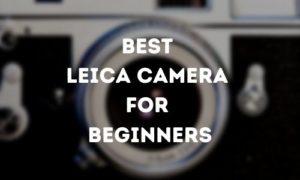 Best Leica Camera for Beginners