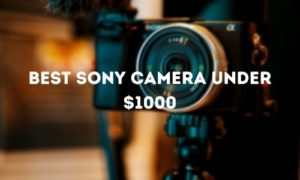 Best Sony Camera under $1000
