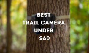 Best Trail Camera Under $60