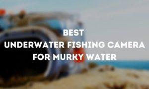 Best Underwater Fishing Camera for Murky Water